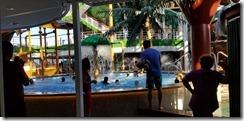 seaside jungle pool (2)